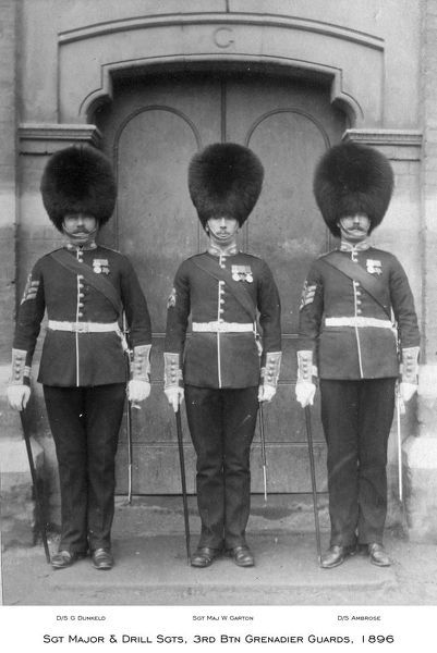 1896, 3rd btn grenadier guards, d/s ambrose, d/s g dunkeld, sgt maj w garton, sgt major &amp drill sgts, Album 13, Grenadiers0698