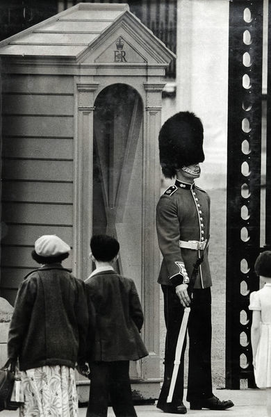 gdsn p hulston, buckingham palace sentry, Album 131, Grenadiers3345