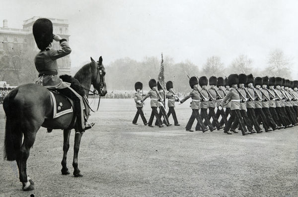 trooping gthe colour, horse guards parade, Album 124, Grenadiers3299