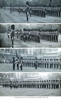 presentation of new colours by king george vi