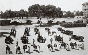 transport on parade 1932